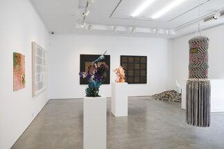 Opulent Landscapes, installation view