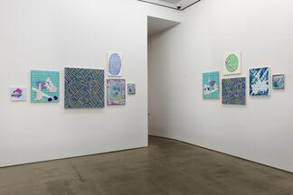 Todd Kelly: Jolly Liar, installation view