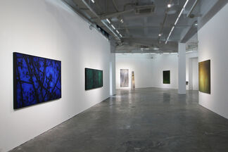 Spring Discovery 2017, installation view