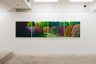 Karl Maughan, installation view