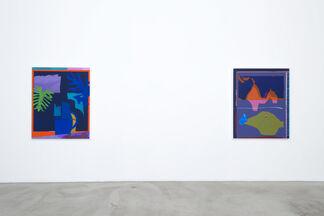 Daniel Gordon: Selective Color, installation view