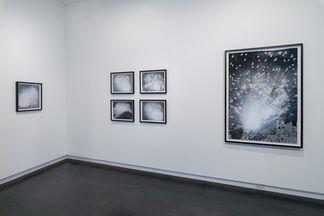 Escape From LA, installation view