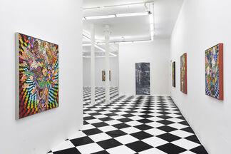 "Caroline Larsen ""Kaleidoscopic"", installation view"