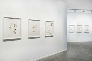 Proceed at Your Own Risk, installation view