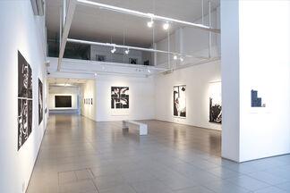 Eduardo Haesbaert   Desumano, installation view