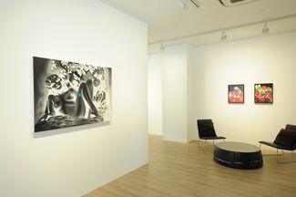 White Shadows, installation view