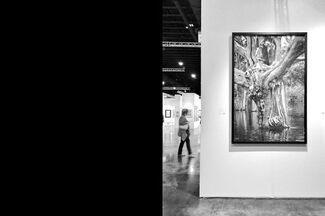 Art Palm Beach 2018, installation view