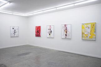 Ryan Wallace: Lenakaeia, installation view