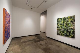 """Evan Nesbit: """"Headstand"""", installation view"""