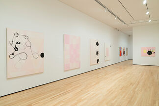 Jo Smail: Flying with Remnant Wings, installation view