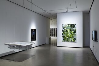 Group show 2017, installation view