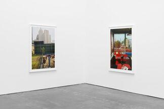 William Eggleston The Democratic Forest, installation view
