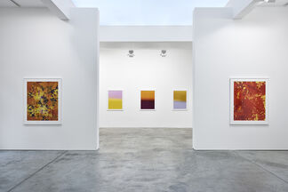 James Welling: Chronology, installation view