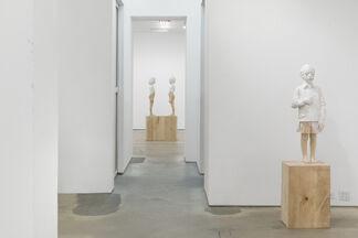 Gehard Demetz: Introjection, installation view