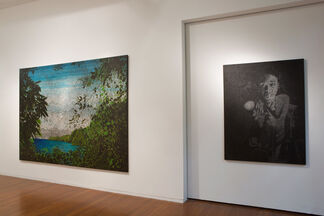 Daniel Boyd, Pineapples in the Pacific, installation view