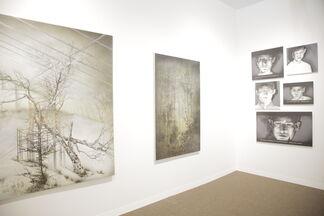 Galeria Senda at PULSE Miami Beach 2015, installation view