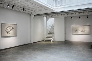Juul Kraijer / Solo show, installation view