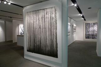 Shedding Constraints - Li Gang & Qin Chong, installation view