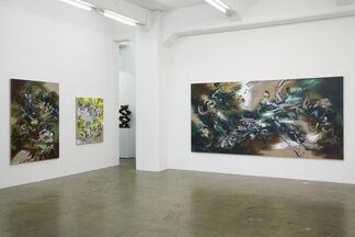 Alpha Paradise, installation view