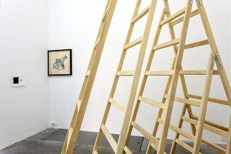 Pravdoliub Ivanov - ON THE WRONG SIDE, installation view
