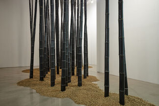 Lee Seung Hee, TAO: Between Dimensions, installation view