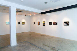 The Silence of the Butterfly, installation view