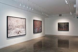 Nicholas Metivier Gallery at Photo London 2020, installation view