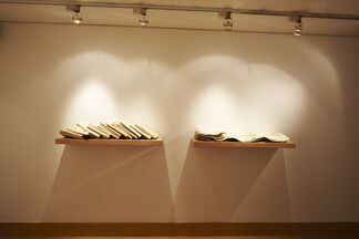 To Classify and Contain, To Keep and Collect. Recent Works by Carol Young, installation view