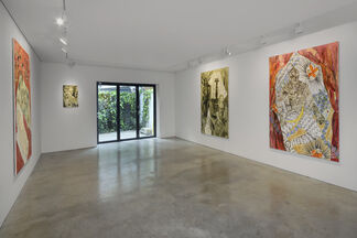 Faye Wei Wei: Anemones and Lovers, installation view