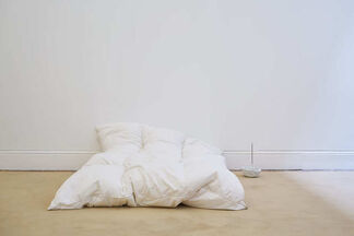 Andrea Zucchini: Foresight by Earth, installation view