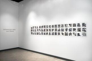 Featured Artist :                   Ann Diener | Entangled Grid, installation view