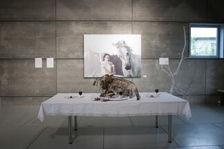 THE ILLUSION IS MORE HORRIFYING THAN THE REALITY, installation view