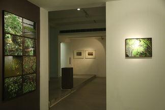 Scapelands, installation view