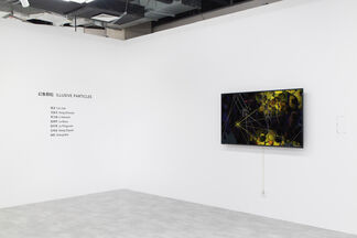 Illusive Particles, installation view