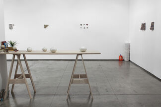 Stefana McClure: The Siege of Flying Mermaids, installation view