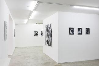 Antonio Malta Campos, installation view