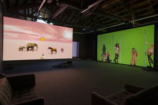 Petra Cortright: NIKI, LUCY, LOLA, VIOLA, installation view