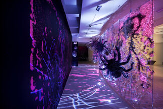 Ran Hwang: The Snowfall of Spiders, installation view