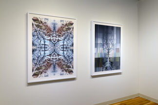 Far From The Road, installation view