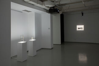 Reflected Action, installation view