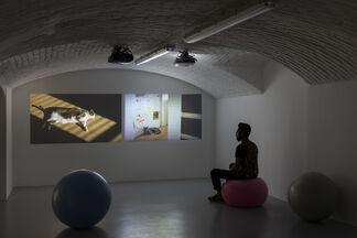 Eileen Quinlan - Down Dog, installation view