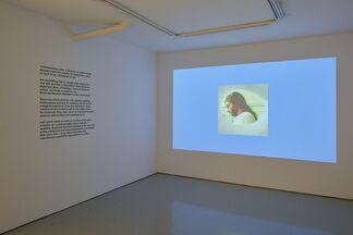 Rasha Kahil - Anatomy of a Scandal, installation view