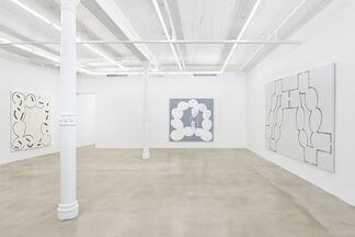 Amy Feldman: Nerve Reserve, installation view