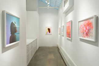 Frances F. Denny | Pink Crush, installation view