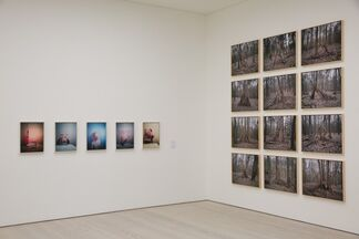 From Selfie to Self-Expression, installation view