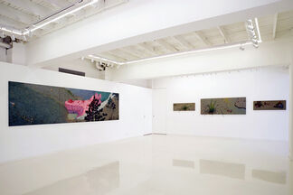 Remains of the Day 印迹, installation view