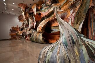 Tapumes, installation view