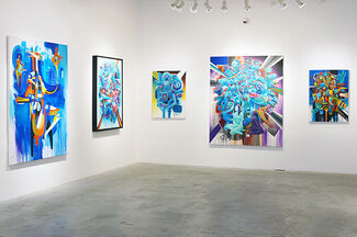 Doze Green, Out of Knowhere, installation view