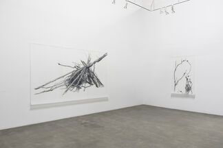 Lynn Hanson's Wrack & Bramble Field Notes and Meditations, installation view