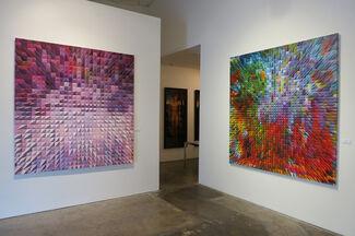 Olga Tobreluts, New Abilities, installation view